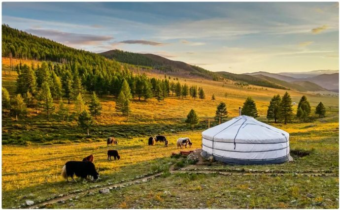 Best Travel Time and Climate for Mongolia